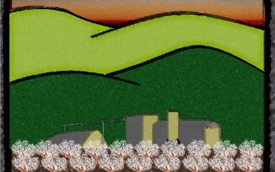 Dunnigan Hills Hulling & Shelling